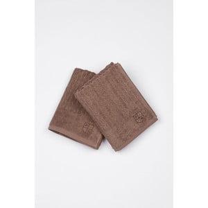Sada 2 uterákov US Polo Mink Eden, 50x90 cm