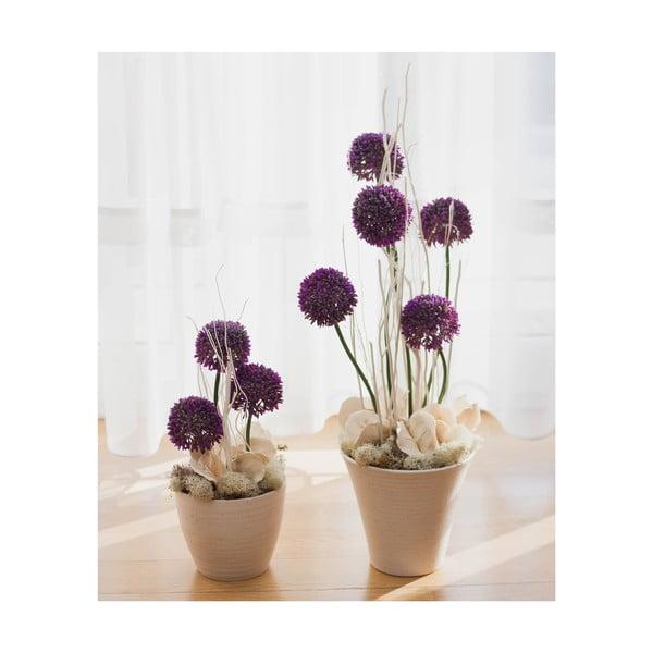 Kvetinová dekorácia od Aranžérie, sada kvetináčov s ozdobným cesnakom
