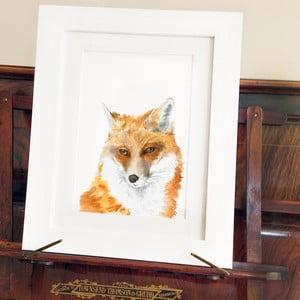 Plagát Fox Junior A4