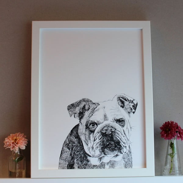 Plagát Leonard The British Bulldog, 30x40 cm
