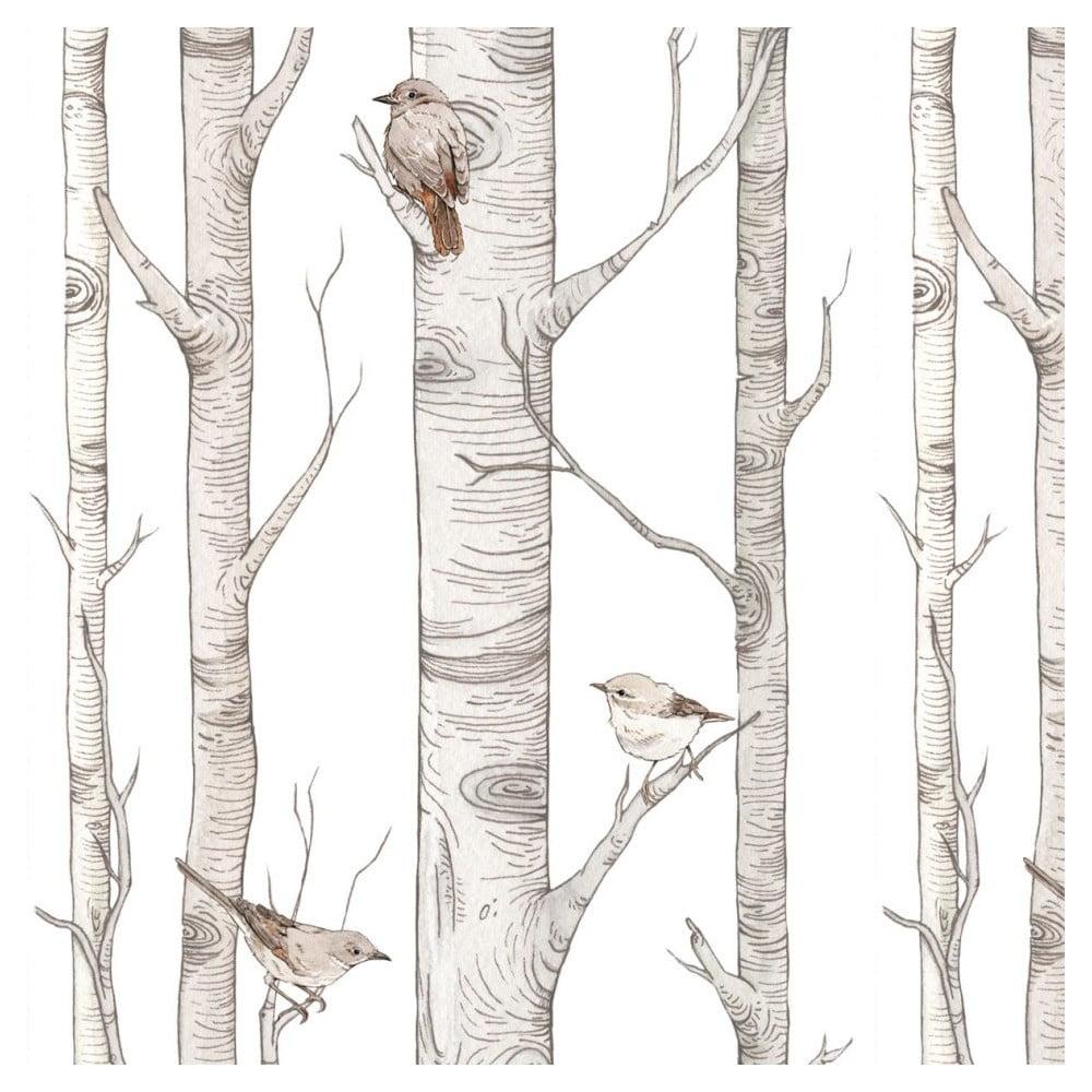 Nástenná samolepka s motívom Škandinávske brezy Dekornik