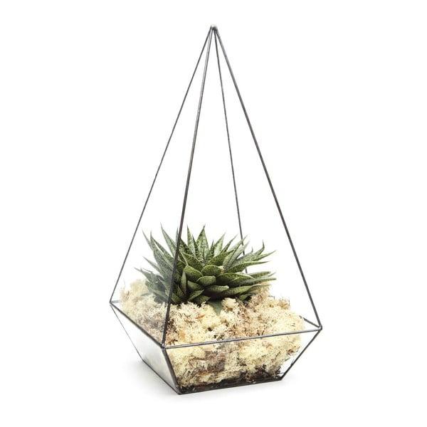 Terárium s rastlinami Super Aztec Pyramid