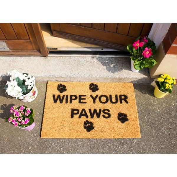 Rohožka Artsy Doormats Wipe Your Paws, 40x60cm