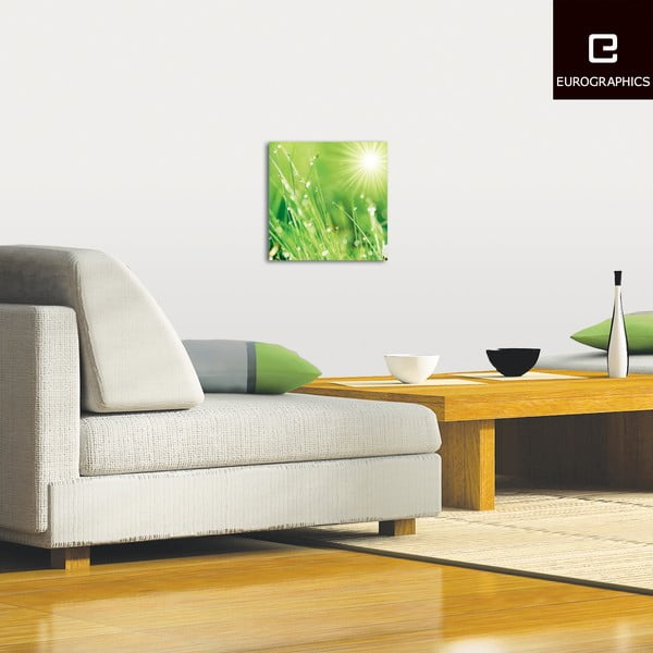 Sklenený obraz Lush Morning Grass, 30x30 cm