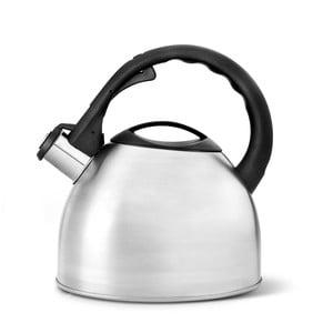 Matná varná kanvica na čaj Bredemeijer, 2,5 l