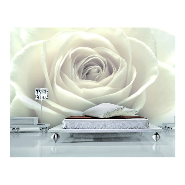 Tapeta Biela ruža, 400x280 cm