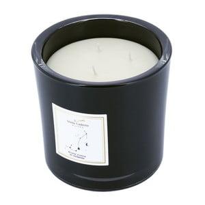 Vonná sviečka v čiernom skle s vôňou jazmínu a pačuli Stella Cadente Štír
