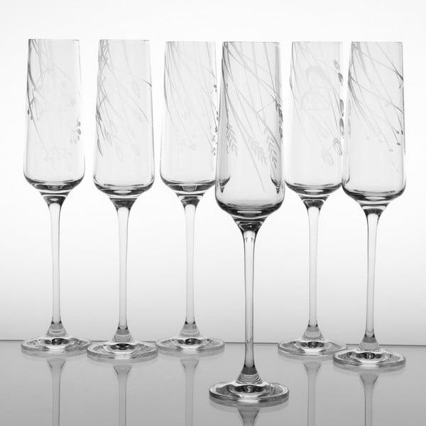 Ateliér Žampach, set 6 ks pohárov na šampanské Traviny dole