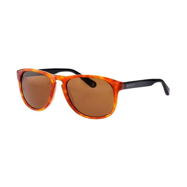 Pánske slnečné okuliare GANT King Honey