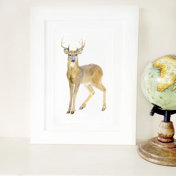 Plagát Deer A3