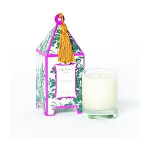 Sada 2 sviečok Plum Chypre, 12-15 hodín horenia