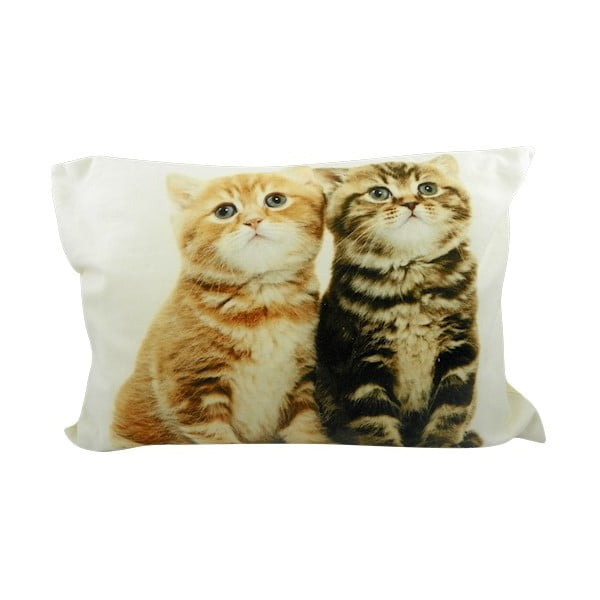 Vankúš Two Kittens British Shorthair 50x35 cm