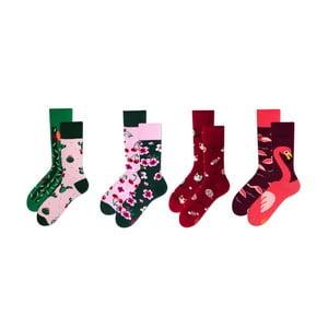 Sada 4 párov ponožiek v darčekovom balení Many Mornings Cactus, veľ. 43–46