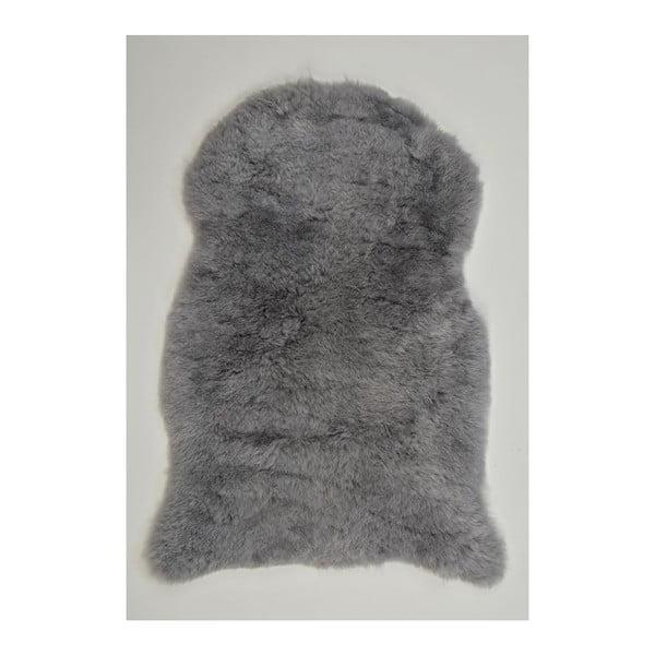 Svetlosivá ovčia kožušina s krátkym vlasom Lina, 90 x 60 cm