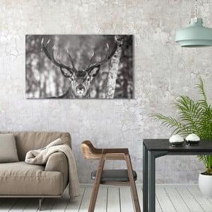 Obraz na plátne OrangeWallz Deer, 70 x 118 cm