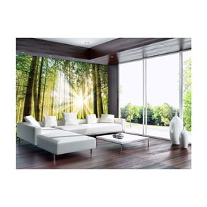 Veľkoformátová nástenná tapeta Vavex Forest, 368×280 cm