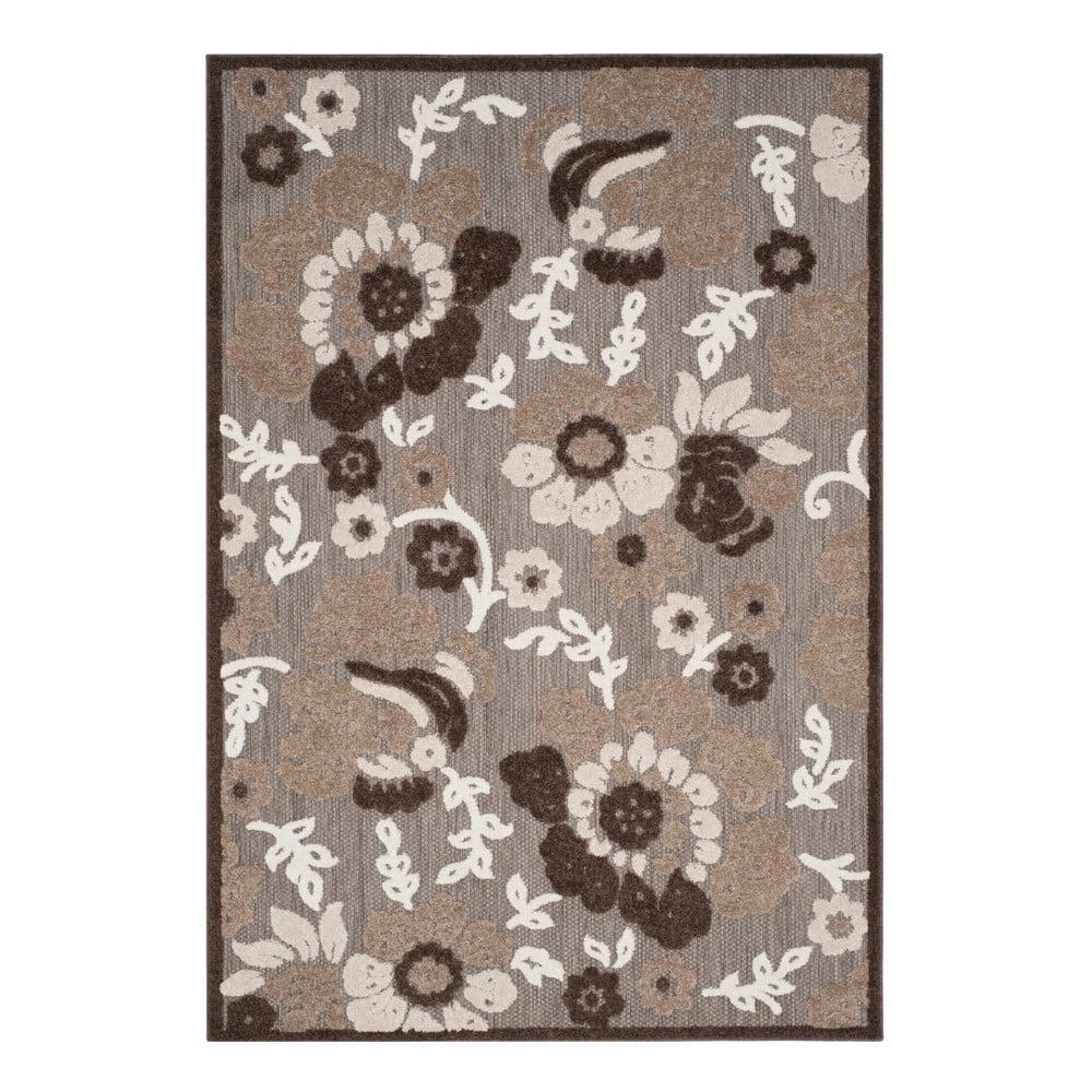 Hnedý koberec vhodný do exteriéru Safavieh Oxford, 160 × 231 cm
