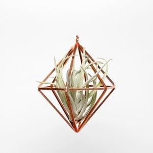 Závesné terárium s rastlinou Prism, 20 cm