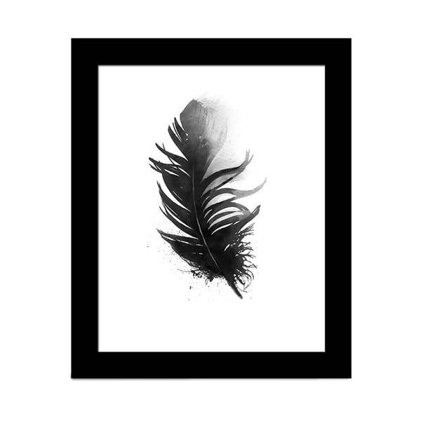 Obraz Alpyros Feather, 23 × 28 cm