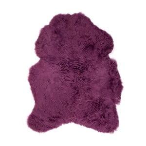 Fialová ovčia kožušina s krátkym vlasom, 90 x 60 cm