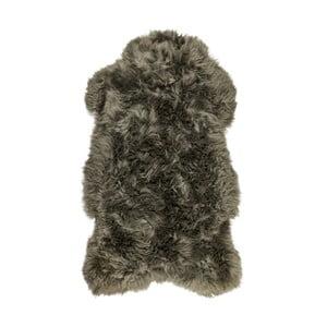 Sivá kožušina z ovčej kožušiny Arctic Fur Lina, 100 × 60 cm