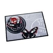 Sivý koberec Zala Living Butterflies, 50x70cm