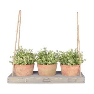 Závesná polička na kvety z borovicového dreva Esschert Design, šírka 53,3 cm