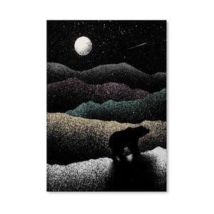 Plagát Wandering Bear od Florenta Bodart, 30x42 cm
