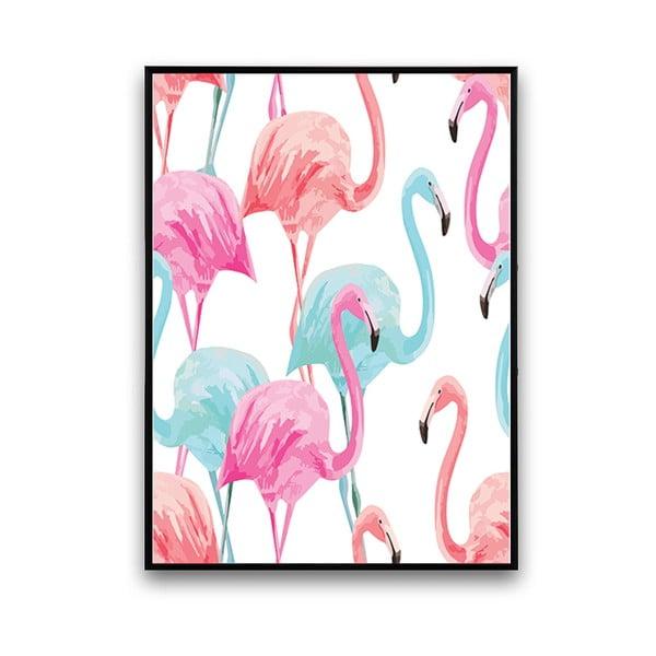 Plagát s pelikánmi, biele pozadie, 30 x 40 cm