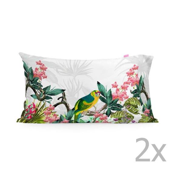 Sada 2 bavlnených obliečok na vankúš Happy Friday Tropic printed, 50 × 80 cm