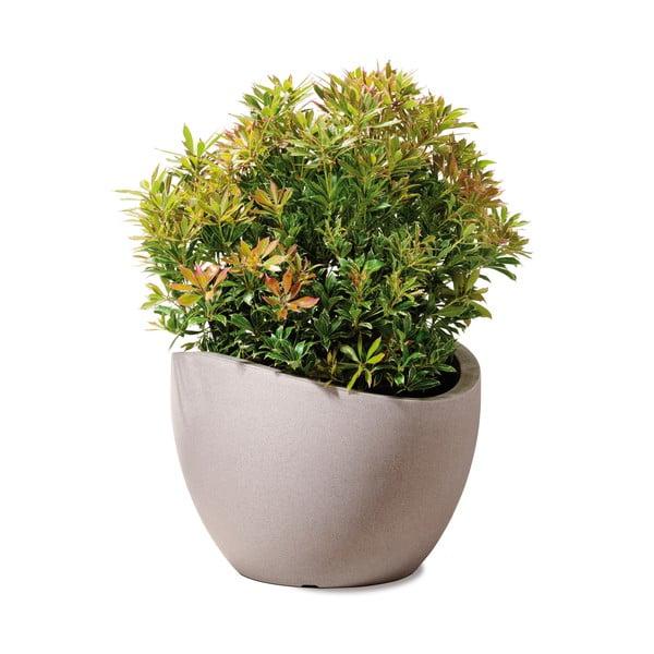 Záhradný kvetináč Globe 30 cm, hnedý