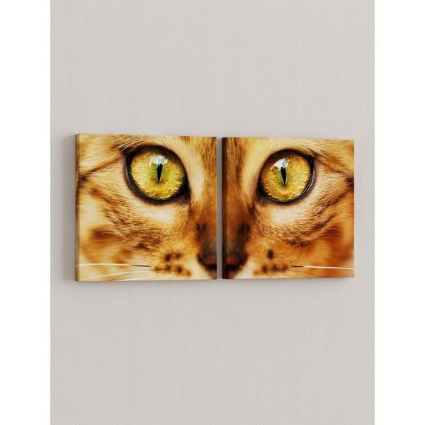 Sada 2 obrazov Pohľad mačky