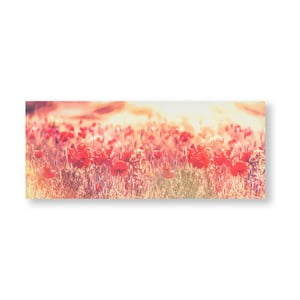 Obraz Graham & Brown Peaceful Poppy Fields, 100 × 40 cm