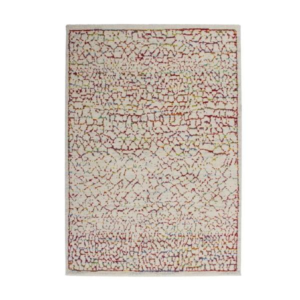 Koberec Desire Color, 120x170 cm