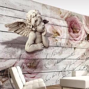Veľkoformátová tapeta Artgeist Angel And Calm, 350 x 245 cm