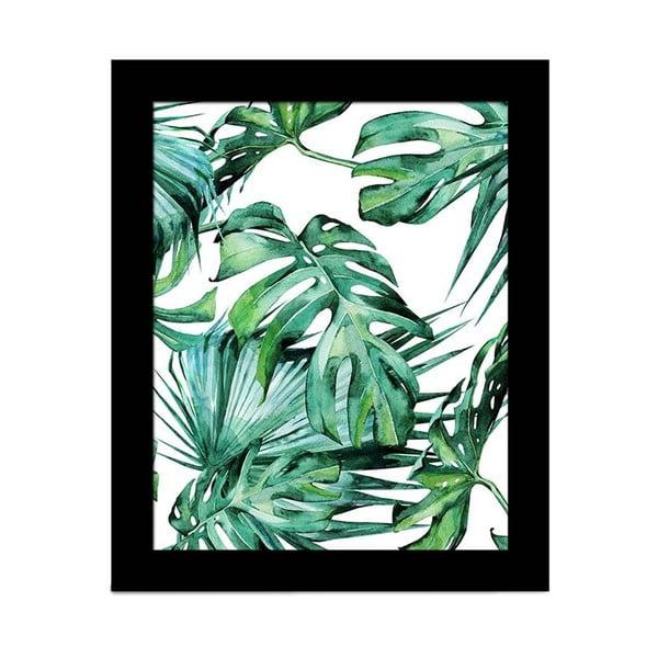 Obraz Alpyros Jungle, 23 × 28 cm