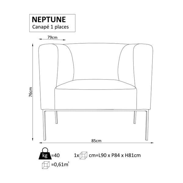 Svetlosivé kreslo Windsor&Co.Sofas Neptune