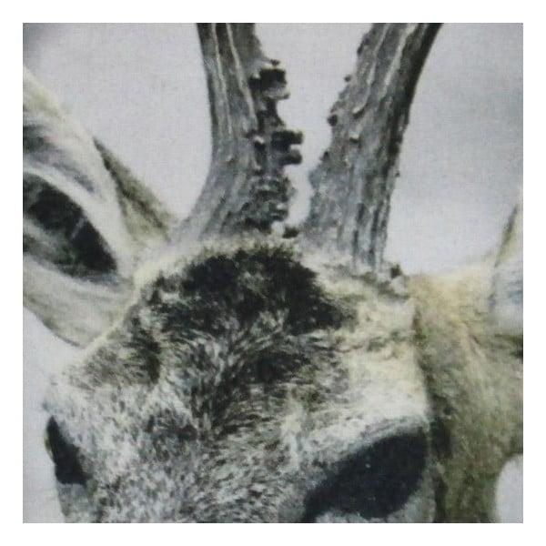 Vankúš  Christmas Roe 50x50 cm