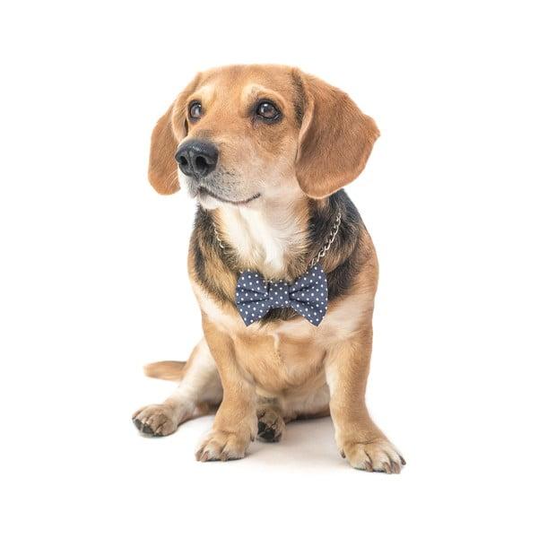Šedý charitatívny psí motýlik s bodkami Funky Dog Bow Ties, veľ. M