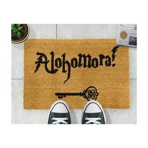Rohožka z prírodného kokosového vlákna Artsy Doormats Alohomora, 40×60 cm