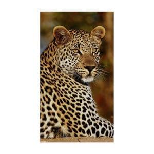 Plážová osuška s potlačou Good Morning Leopard, 100 x 180 cm