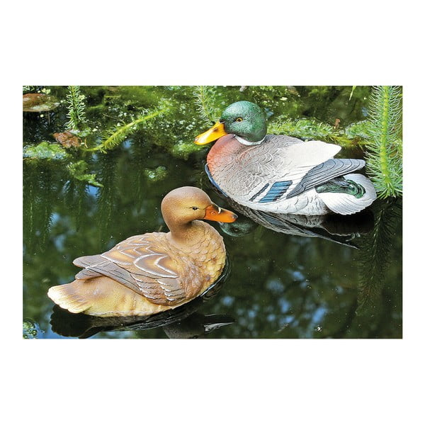 Sada plávajúceho káčera a kačičky Allesa