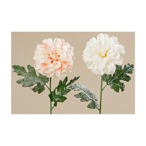 Sada 2 dekoratívnych kvetín Boltze Dahlia