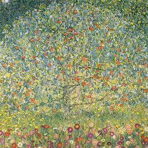 Reprodukcia obrazu Gustav Klimt - Apple Tree, 50x50cm