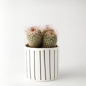 Kvetináč FOR.REST Strips, 11cm