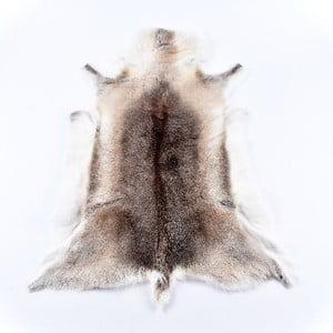 Sobia kožušina Reindeer, 100x60 cm