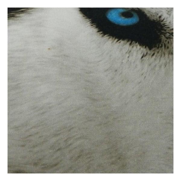 Vankúš Sepia Wolf 50x35 cm