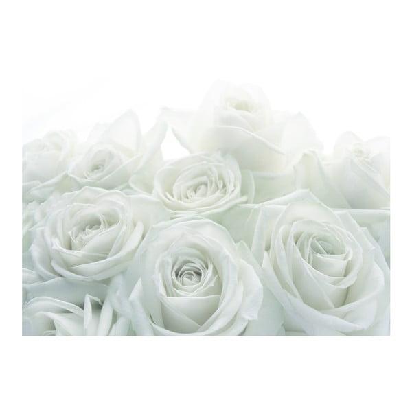 Tapeta Svadobná ruža, 400x280 cm