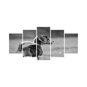 Viacdielny obraz Black&White no. 101, 100x50 cm