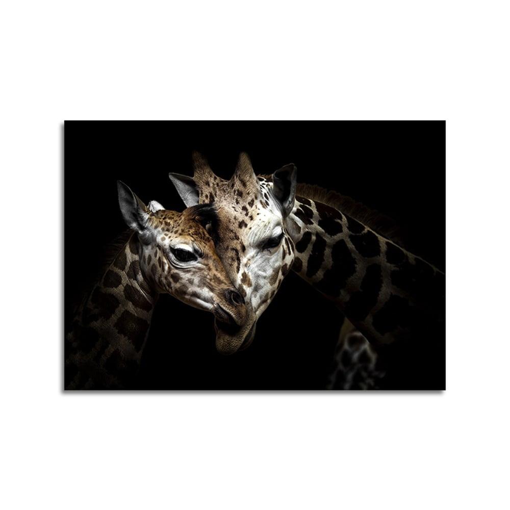 Obraz Styler Glas Animals Giraffe, 70 × 100 cm
